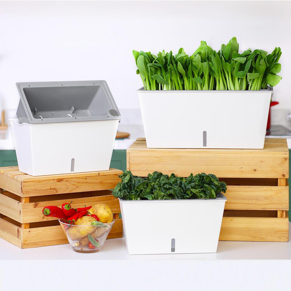 Ae999 livingbasics lb gw 09 hand tools 12 inch rectangular self watering planter indoor windowsill herb planter box outdoor flower pot
