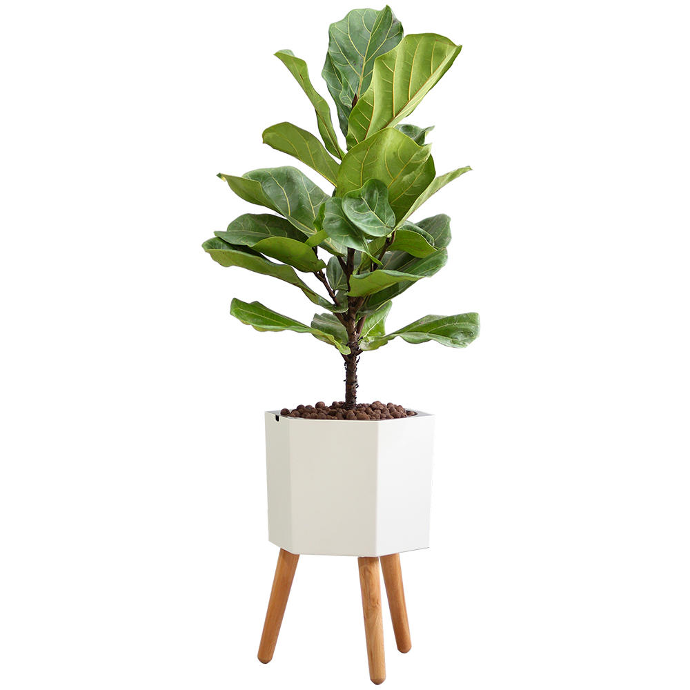 C65ad livingbasics lb gw 10 6 hand tools planter pot with stand 8 9 inches